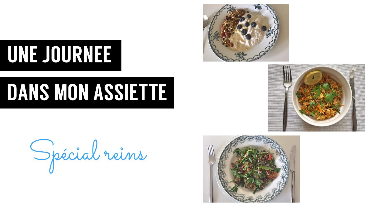 UJDMA Reins une journée dans mon assiette - recettes végétariennes et vegan - atirelarigot